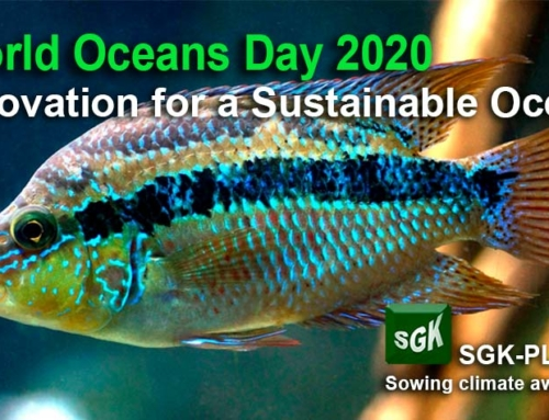 World Oceans Day. Innovation for a Sustainable Ocean