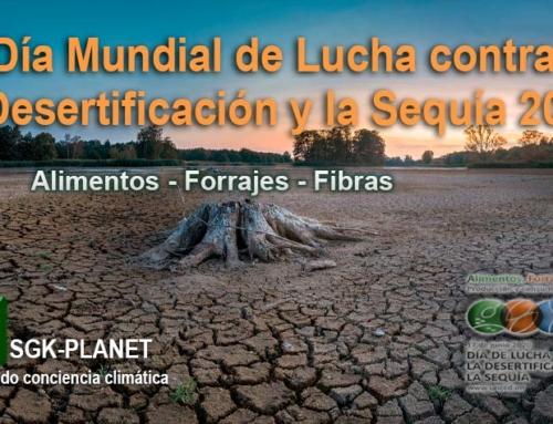 Día Mundial de Lucha contra la Desertificación y la Sequía 2020