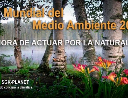 Significado e importancia del medioambiente y la biodiversidad