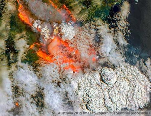 El ABC de los incendios forestales: Australia, Brasil y California