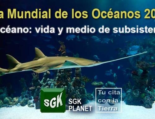 Día Mundial de los Océanos 2021 El océano: vida y medio de subsistencia