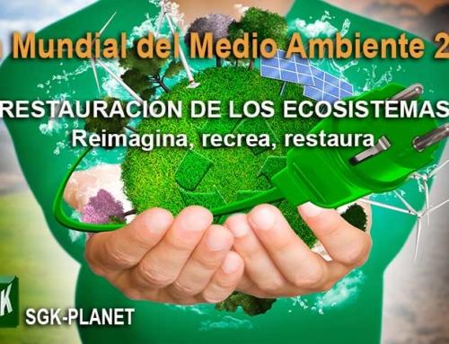 Día Mundial del Medioambiente 2021. Restauración de los Ecosistemas. Reimagina, recrea, restaura