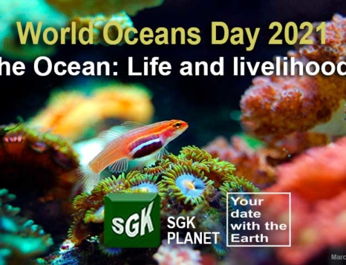 World Oceans Day 2021 The ocean: Life and livelihoods